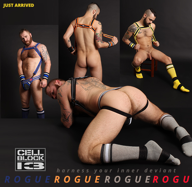 Cellblock 13 Rogue Jocks, Harnesses and Cuff Wallets