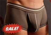 DT Essentials Boxer Brief