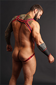 CellBlock 13 Sonic Neoprene Harness