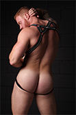 CellBlock 13 X-back Harness
